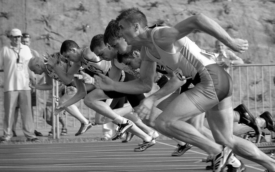 Śledzenie i analiza konkurencji w sprzedaży internetowej